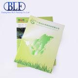 Бумага для печати брошюр знаменитой недвижимости Группы (BLF-F019)