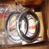 Zylinderförmiges Rollenlager der heißer Verkaufs-gutes QualitätsNu1004m