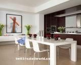Maschere del tavolino da salotto moderno delle merci domestiche della presidenza della Tabella pranzante