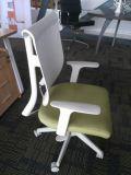 Asiento verde, parte posterior del plástico, Shapesponge de alta densidad de la silla de la oficina (OWCR4903)