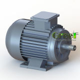 5kw 50kw 500kwの高性能低いRpm三相AC永久マグネット交流発電機