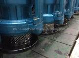 새로운 디자인 Qdx 정원 농장 전기 잠수할 수 있는 수도 펌프, (0.75KW/1.1kw/1.5kw)