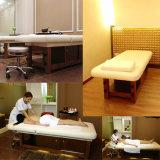 Multifunctionele massagebed Elektrische Massage Tafelmassage van hoge kwaliteit Beddenlaken