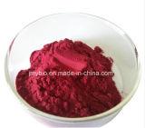 Flavones puros de alta qualidade Pure Acai Berry Extração 10%