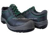 De mooie Groene Stikkende Schoen van het Werk (HQ01012)