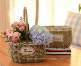 (BC-SF1004) Cesta hecha a mano popular de la flor de la paja