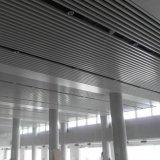 Innenarchitektur AluminiumSuspened ue-förmig Leitblech-Decke