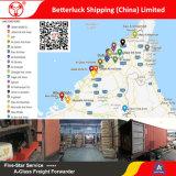 Porte à porte de l'Agent d'expédition de la Chine aux Émirats arabes unis Fret maritime