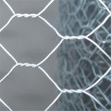Heet Ondergedompeld Gegalvaniseerd Met een laag bedekt Hexagonaal Netwerk voor Australië
