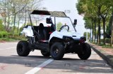 150ccおよび200cc 2 Seaters 4X2 UTV Ut2001