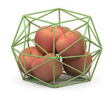 Cuvette de mémoire de fruit de la géométrie de mode