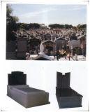 Natuurlijk Graniet voor de Herdenkings HerdenkingsDienst van de Metselaars van Tuinen Monumentale