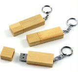 Zweig USB-Blitz-Laufwerk und hölzerner USB-Stock