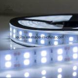 두 배 줄 5050 실리콘 관 유연한 LED 지구 빛
