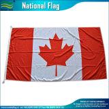 100% Polyester élection les drapeaux des pays en extérieur (B-NF05F09015)