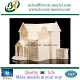 中国3Dの印刷の樹脂モデル