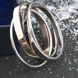 Mulheres moda New Rose Gold Bracelet Stainless Steel Double Bangles