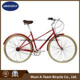 Qualität 2017 Chromoly Dame City Mixte Bike (CTB19)
