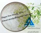 Esteroides inyectables PRIMOBOLAN DEPOT Primobolan para el crecimiento muscular