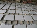Ослепительно белый мрамор плитка /слои REST для пол и стены оболочка