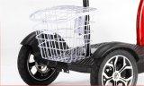 Smartek 3 Rad-Roller-Mobilitäts-elektrischer Roller für untaugliche Qualitäts-elektrischen Roller Eac-500-3