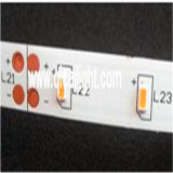 3014 SMD LEDのストリップ、保証3年の