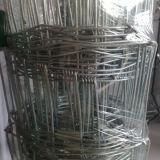 T-Столб металла качественных продучтов используемый ограждая изготовления в США