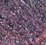 Bueatiful 신제품 대양 빨간 대리석 석판
