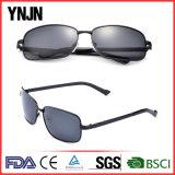 ترويجيّ عادة علامة تجاريّة [أوف400] يستقطب رجل يقود نظّارات شمس ([يج-ف8145])