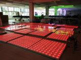 video priorità bassa di Dance Floor della discoteca dello studio di 100pixel LED
