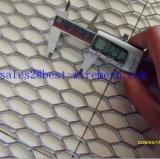 Нержавеющая сталь расширила сетку металла/расширенную алюминием сетку металла