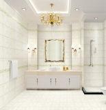 5D-Inkjet Matt rustikale Innenporzellan-Wand-Fliese für Badezimmer-Dekoration