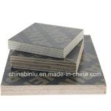 Exportación hecha frente película fenólica de la madera contrachapada de la fábrica de Linyi