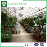 Groenten/Tuin/Bloemen/Serres van het Blad van het Polycarbonaat van de Spanwijdte van het Landbouwbedrijf de Multi