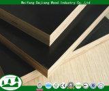 [هيغقوليتي] ضمانة بناء خشب رقائقيّ مع فيلم [أنتي-سليب] لأنّ بناء