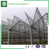 Парник Hydroponic системы пяди Muti- цены изготовления стеклянный для земледелия