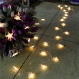 Luzes ao ar livre da corda do diodo emissor de luz da forma da estrela da decoração