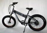 2018 중국 26inch 750W 큰 힘 E 자전거 지방질