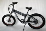 2018 китайское сало E-Bike силы 26inch 750W большое
