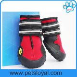 Laarzen van de Hond van de Schoenen van het Huisdier van de Toebehoren van het Huisdier van de Luxe van de Verkoop van Amazonië de Hete