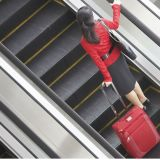 Protection의 Higher Level를 가진 옥외 Public Transport Type Escalator