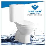 Керамические Weidansi промойте вниз S-Trap два туалета (WDS-T6203)