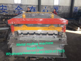 Importante remise en acier galvanisé machine à profiler toiture/Panneau mural
