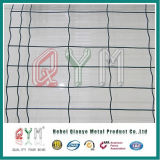 Rete fissa dell'euro saldata 6X6 ricoperta PVC della rete metallica di 4X4 5X5