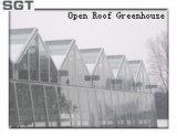 Vidro temperado com baixo teor de ferro de 4mm para estufa de telhado aberto (lados, frontão)