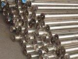 Produits en acier inoxydable ou acier/plaque en acier/acier en bobines de tôle en acier/317 (SUS317 STS317)