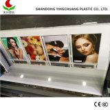Feuille de plastique fabriqués en Chine Le principal marché de l'Asie