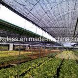紫外線の農業の新しいPEの陰のネット(YHZ-SDN13)