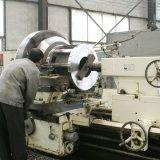 Boulette économiseuse d'énergie automatique de biomasse faisant la machine