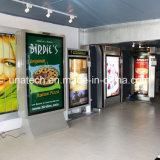 Tela de materia textil vertical al aire libre de los media de publicidad que coloca el rectángulo ligero libre de Muppy LED de la película